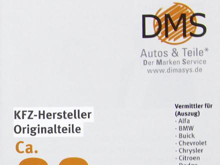 DMS Flyer Teaser